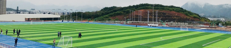 zebra line soccer turf